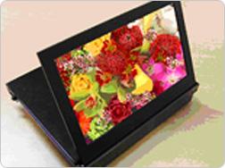 Kodak orders OLED panels for digital photo frames