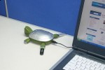 Turtle USB 2.0 Hub sports hidden compartment