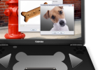 Toshiba PetBook K9 provides pups with mobile computing