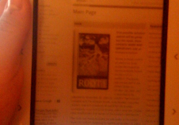 Barnes & Noble nook gets working browser