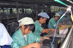 KYE Factory in China Using Underage and Underpaid Employees