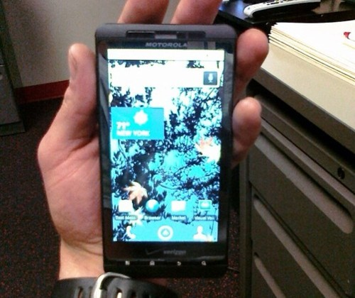 Verizon's Motorola Droid Shadow stumbled on in wild?