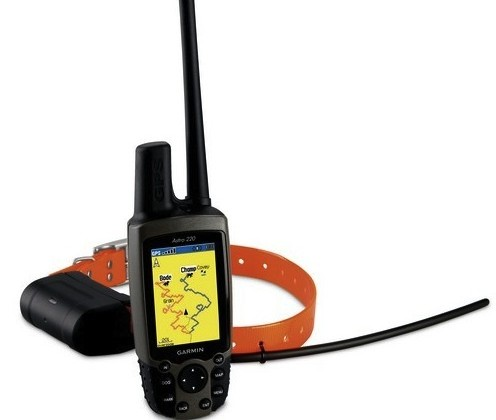 Garmin Astro DC 40 GPS Dog Tracker helps you corral your canine
