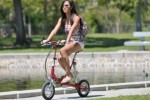 VeloMini Electric Folding Bicycle Has Top Speed of 12mph, Costs More Than it Should