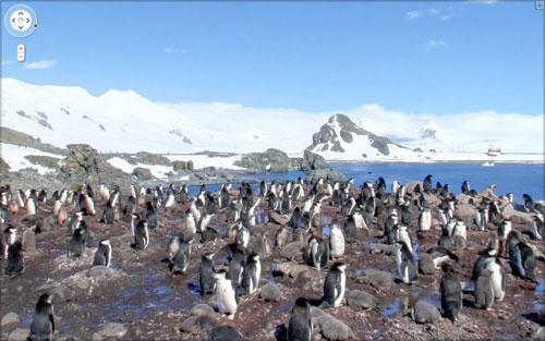 Google Street View hits Antarctica