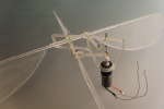 Ornithopter Replicates Insect Flight