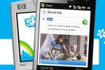 Skype delays IPO, Facebook and Google seek joint ventures