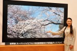 Sharp and NHK offer world's first 85-inch Direct-View LCD that works with Hi-Vision
