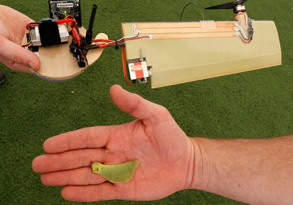 Simplistic Lockheed drone flies like a maple seed