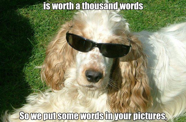 Google+ gets photo meme creation tool