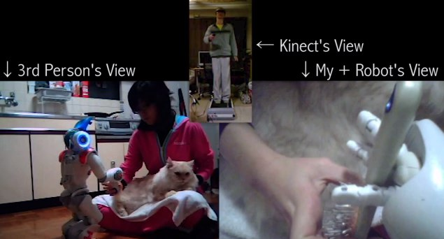 DIY Robot Avatar pets cat through Kinect and Wiimote power