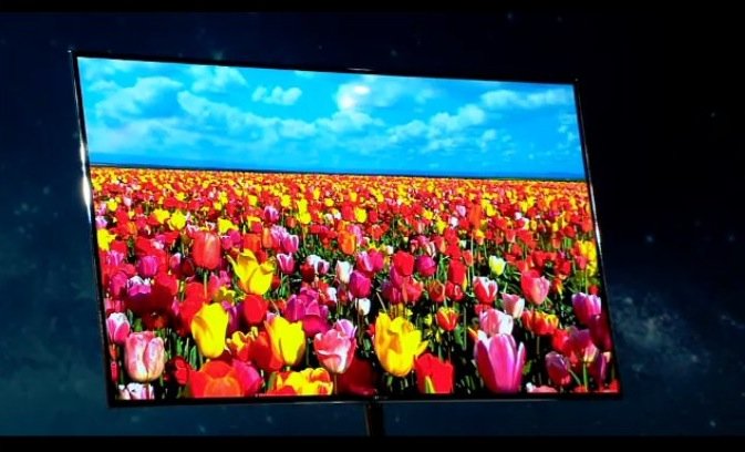 Samsung 55-inch OLED TV will go on sale this year