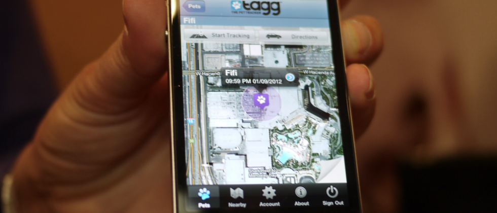 Tagg The Pet Tracker hands-on