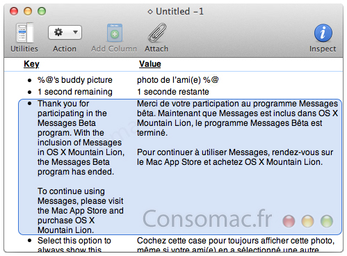 Mountain Lion upgrade only way to keep Messages post-beta?