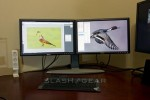 As desktop PC sales decline, multiple monitor use is on the rise
