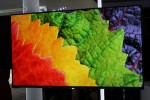 LG 55-inch OLED TV tipped at $7900