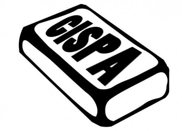 """Worse than SOPA"" CISPA bill passes"