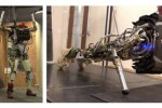 Latest DARPA Grand Challenge is for humanoid robots