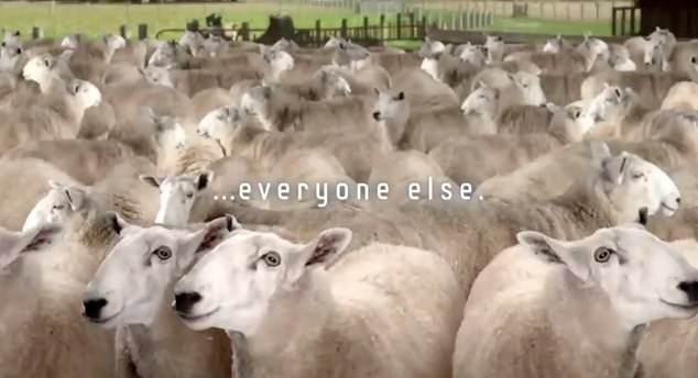 Samsung Galaxy S III teaser video calls you sheep
