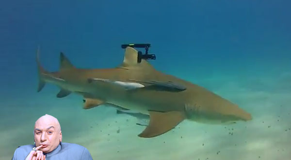 Wicked Lasers creates Doctor Evil's dream shark