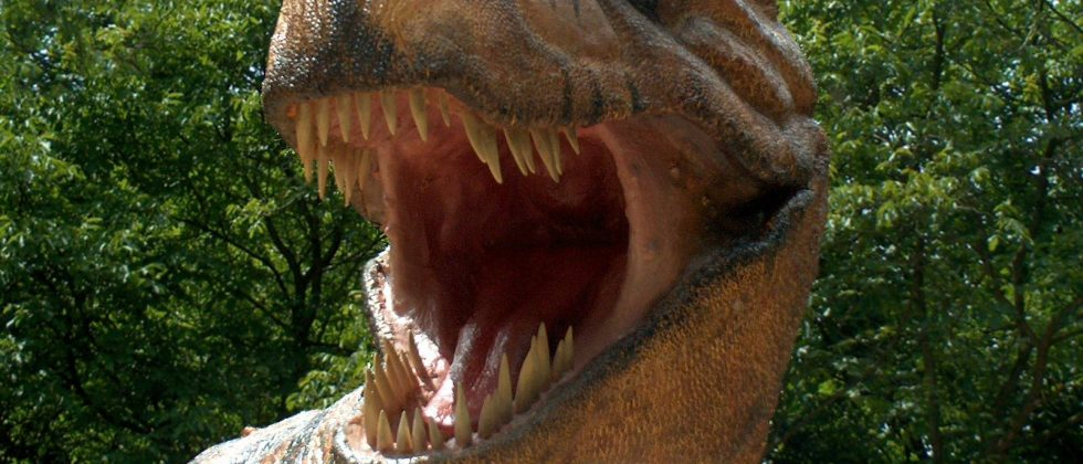 Dinosaurs are hot say palaeontologists