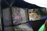 Google Earth 3D hands-on at Google I/O