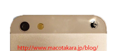 iPhone 5 back shows glass and aluminum panels