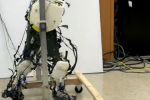 Scientists develop most advanced robotic legs yet