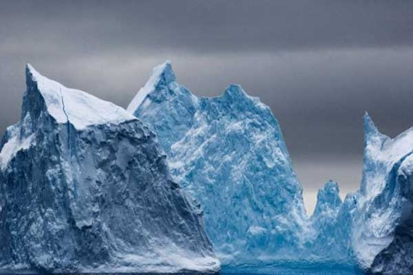 Ancient rain forest discovered in sediment cores from Antarctic seabed