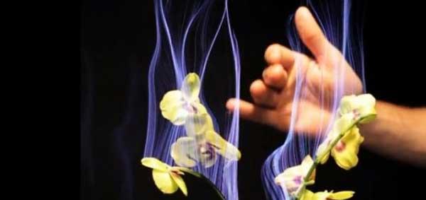 Disney creates Botanicus Interacticus multi-touch plants