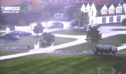Megaupload Dotcom mansion raid video released