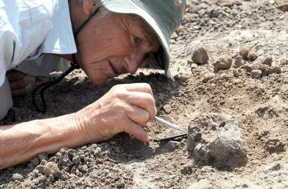 Paleontologists Discover fossils believed to be from two new pre-human species