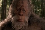 Scientists claim DNA evidence proves the existence of Bigfoot