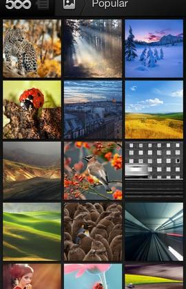 500px back in iTunes App Store after pornography debacle