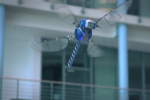 Festo shows off BionicOpter robotic dragonfly in video demonstration