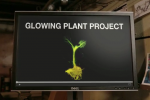 Biohacking Kickstarter project promises glowing plant seeds