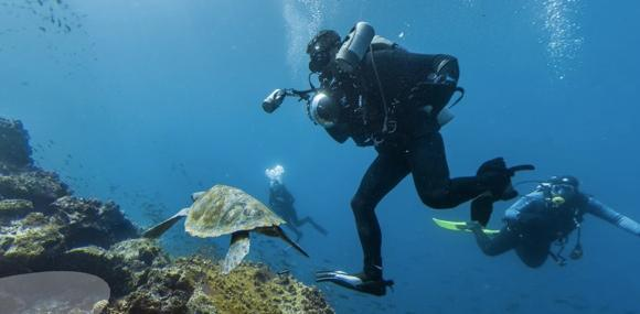Google Street View now offering tours of the Galapagos Islands