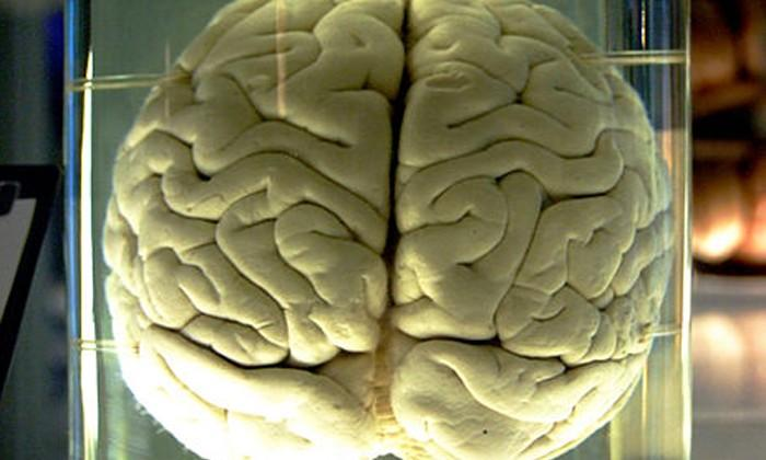 Qualcomm Neural Processing Units to mimic human brains for your phone