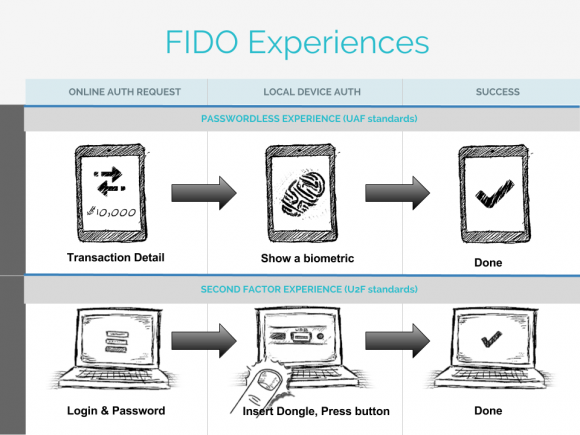 fido_experience