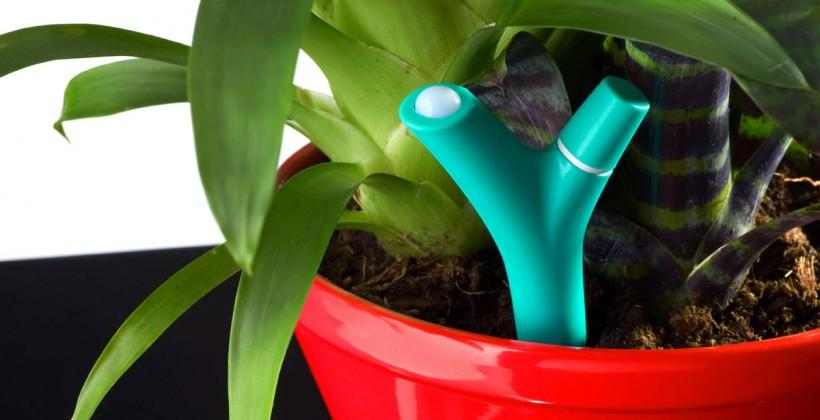 Parrot Flower Power launch detailed for green-fingered geeks