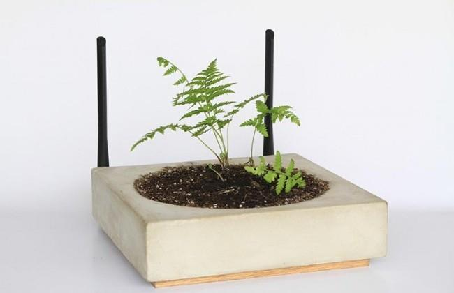 Marble WiFi router lets you grow a small plant on its surface
