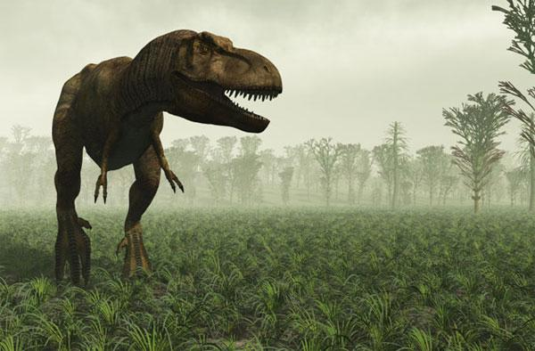 Scientists explain how T Rex soft tissue remained preserved for 68 million years