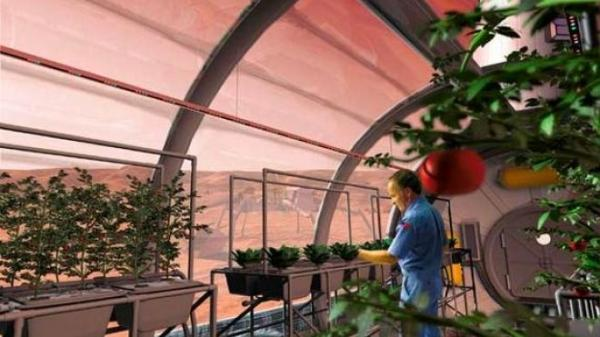 NASA wants to grow turnips, flowers and more on the moon by 2015
