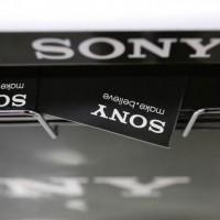 Sony decides to hold onto battery unit