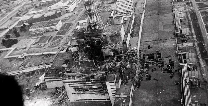Chernobyl fall-out slammed brakes on nature says study