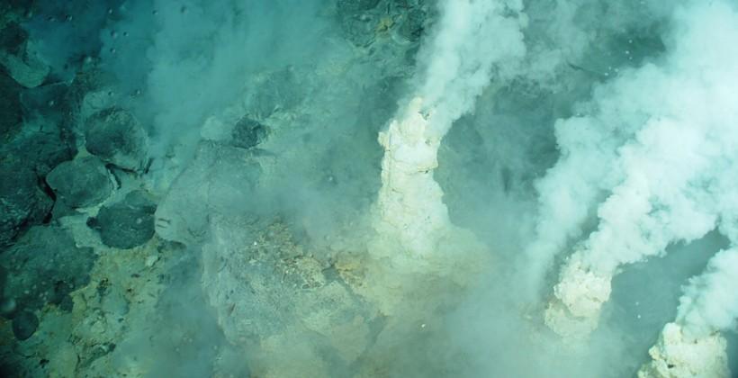 A Zombie war is raging in the deep sea