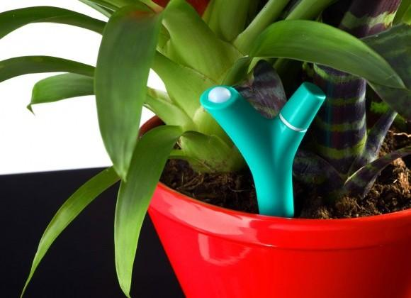 Parrot Flower Power partners with IFTTT to automate gardening
