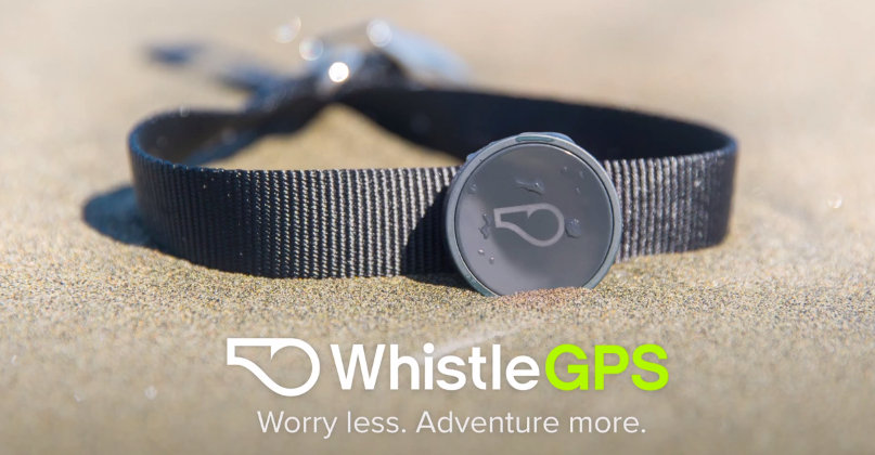 WhistleGPS dog tracker first to use SIGFOX IoT network