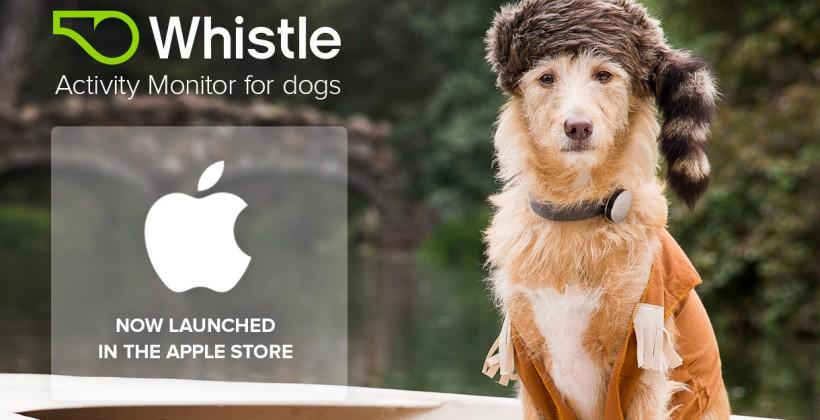 Whistle dog wearable hitting Apple Store, IFTTT