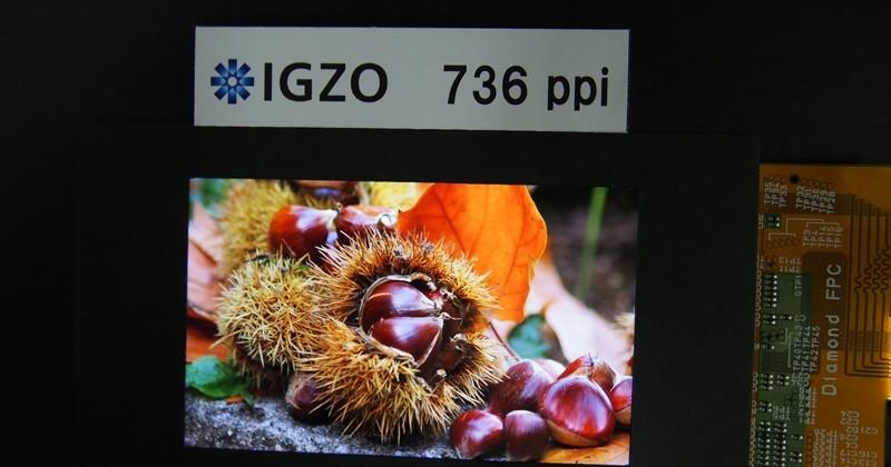 Sharp IGZO display amps up density to 736PPI